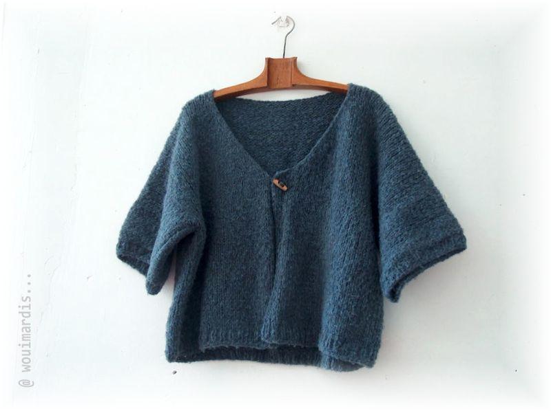 tricot gilet femme facile