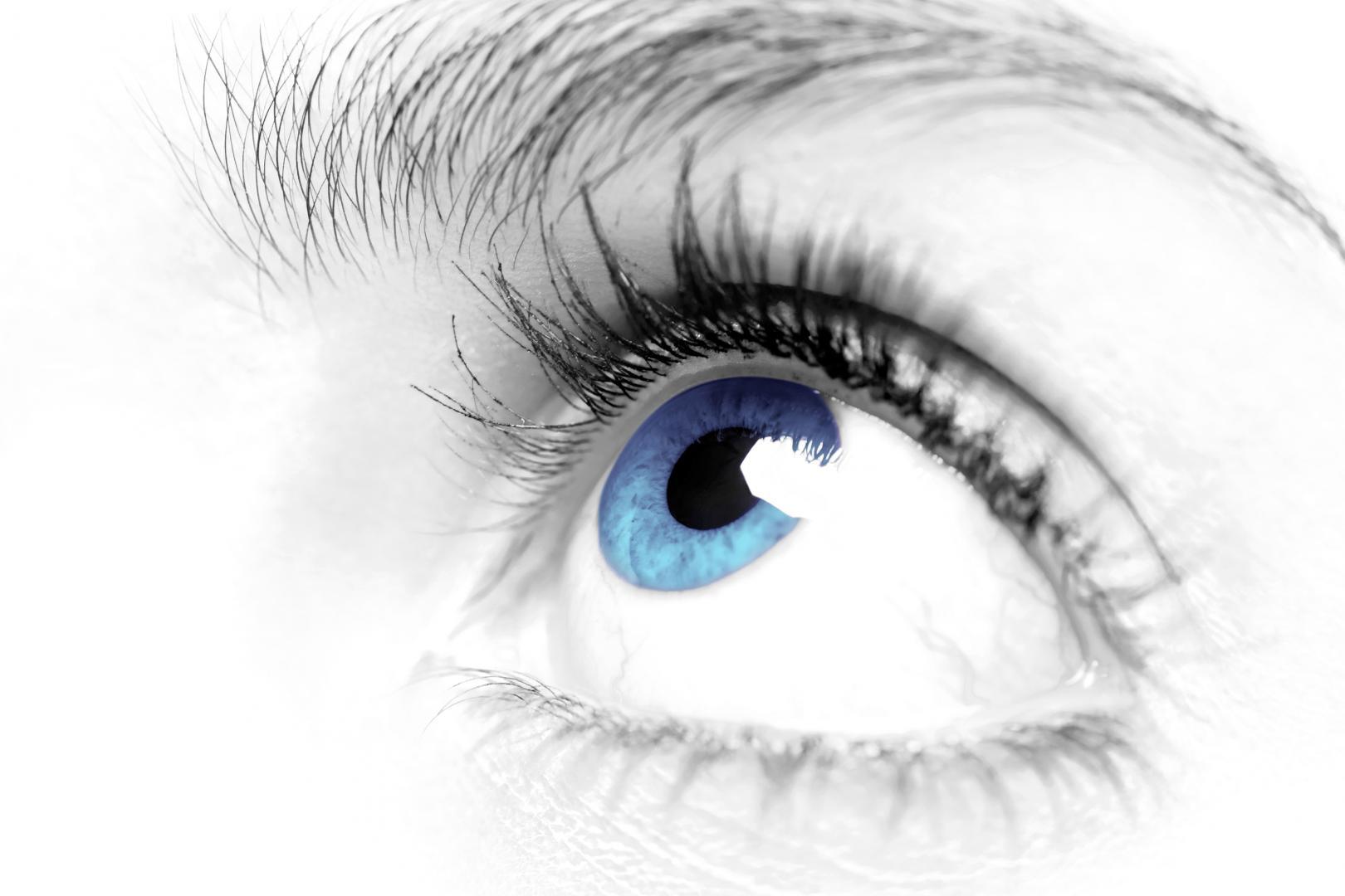Si vous avez besoin de lentilles de contact